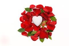 Weißes keramisches Herz, das auf dem Bett von rosafarbenen Blumenblättern und von Blättern O liegt Lizenzfreie Stockbilder