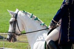 Weißes Lusitano Pferd mit Reiter Stockfotos