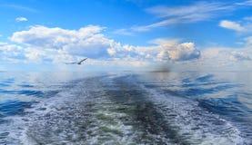 Weißes Meer Stockfotografie