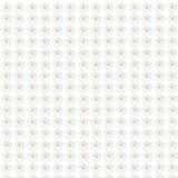 Weißes nahtloses mit Blumenmuster blüht Beschaffenheitshintergrund Stockbild