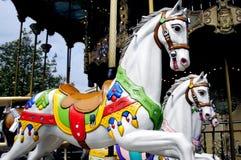 Weißes Pferd für Kindheit Stockbild