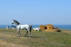 Weißes Pferd Zahlen von den Pferden gemacht vom Plastik auf dem Rasen Stockfotos
