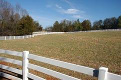 Weißes Pferden-Zaun Stockfotografie