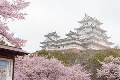 Weißes Schloss-Himeji-Schloss beim Kirschblütenblühen Lizenzfreie Stockfotografie