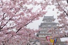 Weißes Schloss-Himeji-Schloss in der Kirschblütenblüte im Vordergrund Stockfotos