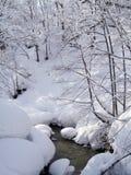 Schöner Schneewald mit Fluss lizenzfreie stockfotografie