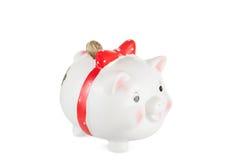 Weißes Schwein moneybox mit einer Münze Stockfoto