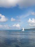 Weißes Segelboot in Meer Stockfoto