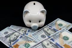 Weißes Sparschwein lokalisierte Nahaufnahme auf einem Stapel von Währung Vereinigter Staaten gegen einen schwarzen Hintergrund Re lizenzfreie stockfotografie