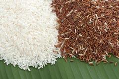 Weißes und rotes Reiskorn Lizenzfreie Stockfotografie