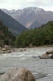 Weißes Wasser von Ganga Stockbild