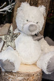 Weißes WeihnachtsTeddybär mit dem Stern. Stockbilder