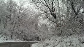 Weißes Winter Märchenland in eisigem Pennsylvania Lizenzfreie Stockbilder