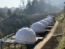 Weißes Zelt für Gäste werden auf hölzernem Podium auf dem Kampieren bewirtet lizenzfreie stockbilder