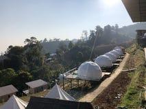 Weißes Zelt für Gäste werden auf hölzernem Podium auf dem Kampieren bewirtet stockfoto