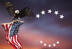 Weißkopfseeadlerfliegen mit amerikanischer Flagge Lizenzfreie Stockfotos