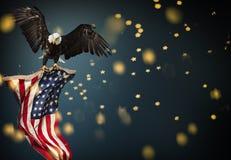 Weißkopfseeadlerfliegen mit amerikanischer Flagge Lizenzfreies Stockfoto