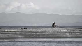 Weißkopfseeadlerpaare stehen auf totem Baumstumpf am Mund von Elwha-Fluss 2017 still stockbild