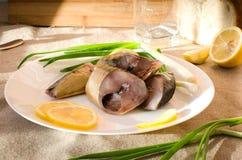 Weißplatte der geräucherten Makrele lizenzfreie stockbilder