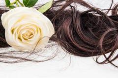 Weißrose auf braunem Haar Lizenzfreie Stockbilder