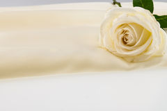 Weißrose auf Elfenbeinseidensatin Stockbild