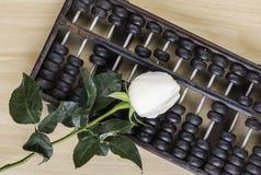 Weißrose lokalisiert und Abakus auf Bretterboden Lizenzfreie Stockbilder