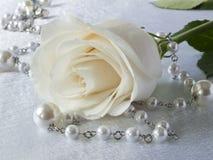 Weißrose und -perlen Lizenzfreies Stockbild