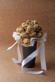 Weißrosentrockenblume Stockfoto