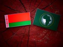 Weißrussland-Flagge mit Flagge der Afrikanischen Union auf einem Baumstumpf Lizenzfreie Stockfotografie