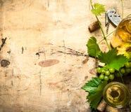 Weißwein mit einer Rebe Lizenzfreie Stockfotografie