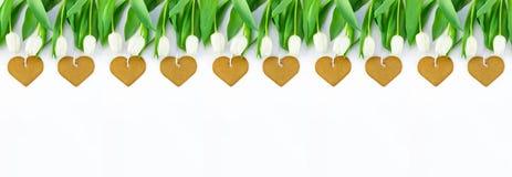 Weiße Tulpen und Herz formten Plätzchen auf weißem Hintergrund mit Kopienraum Draufsicht, Fahne für Website stockfoto