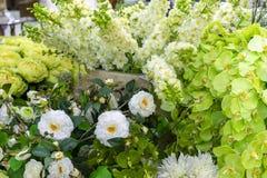 Weiße und grüne dekorative Blumen für festliche Dekoration des Innenraums stockfoto