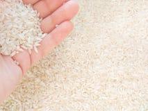 Weißer Reis in der Hand auf hellem Hintergrund stockbilder