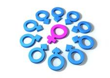 Weibliche Anziehungskraft Lizenzfreies Stockbild