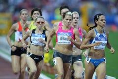 Weibliche Athleten 800m abschließend lizenzfreie stockfotos