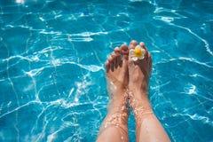 Weibliche Beine im Poolwasser und -blume Lizenzfreie Stockfotografie