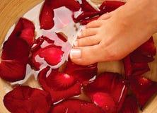 Weibliche Beine im Wasser mit den rosafarbenen Blumenblättern Stockfotografie