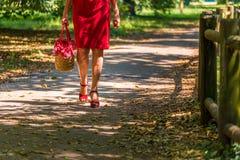 Weibliche Beine mit Cellulite und schlechter Zirkulation lizenzfreie stockfotos