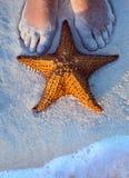 Weibliche Beine und Starfish Art Beautifuls auf dem Strandsand Lizenzfreie Stockfotos