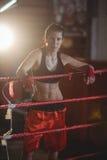 Weibliche Boxer, die im Boxring stehen Stockfotos
