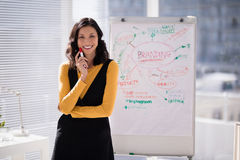 Weibliche Exekutivstellung vor Flip-Chart im Büro lizenzfreie stockfotografie