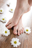Weibliche Füße auf dem dunklen Fußbodenbrett lizenzfreie stockfotografie