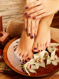 Weibliche Füße am Badekurortsalon auf Pedicureprozedur Stockfotos