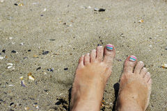 Weibliche Füße im nassen Strandsand Stockbild