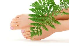 Weibliche Füße mit grünem Blatt Lizenzfreie Stockbilder