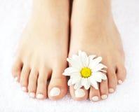 Weibliche Füße mit pedicure Lizenzfreies Stockbild