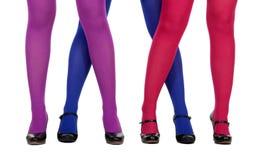 Weibliche Fahrwerkbeine im Pantyhose Lizenzfreie Stockbilder