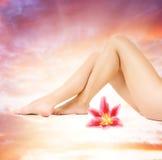 Weibliche Fahrwerkbeine mit rosafarbener Lilie Lizenzfreie Stockfotos
