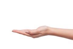 Weibliche Frauenhandholding Lizenzfreie Stockbilder