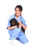 Weibliche Gesundheitspflege-Arbeitskraft mit Hund Stockfotos